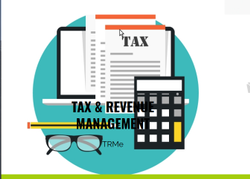 Tax And Revenue Management System Solutions