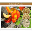 Bulk Quantity Sesbania Gum Powder For Petrochemical Use