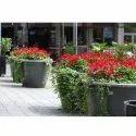 Site Planning Corporate Landscape Design Service