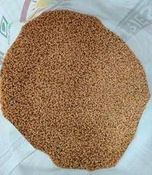 Samarth Brown Wheat