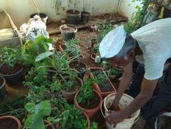 Gardening Service For Farm Houses
