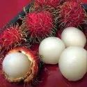 Rambutan Fruits Plant