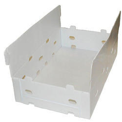 White Fruit Packaging Boxes