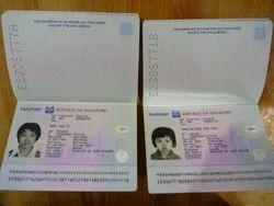 Passport Online