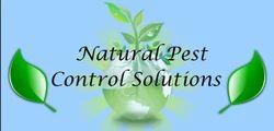 Organic Pest Control Service in Delhi NCR