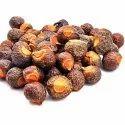 Sapindus Mukorossi Extract Powder