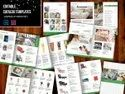 Paper Custom Brochure Printing Services, Size: A4