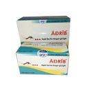 Dengue Test Rapid