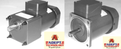 Three Phase AC Induction Geared Motor
