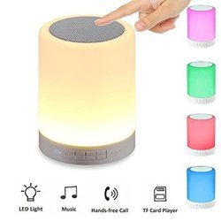 LED Portable Speaker
