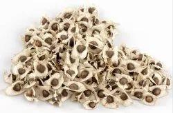 Moringa Seed (Drumstick Seed)