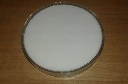 Paper Adhesive