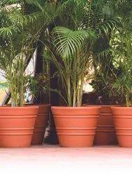 Rotomould Pots