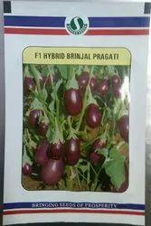 Pragati F1 Hybrid Brinjal Seeds, Packaging Size: 10 Gram, Packaging Type: Packet