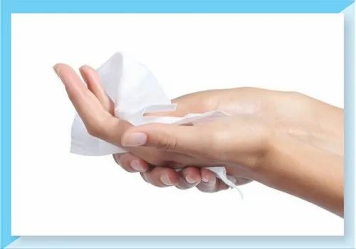 Medical Hand Wipes (Dry), Packaging Type: Packet