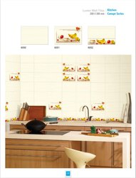 Ordinary 20x30 wall tiles