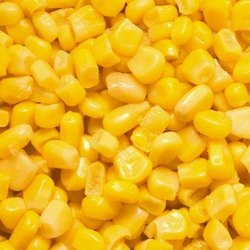 Dry Corn, For Multi Purpose