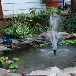 Water Body Development & Maintenance