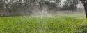 Water Spray Irrigation