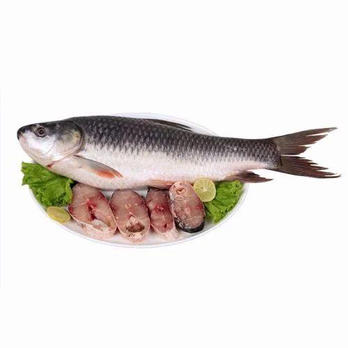 Rohu Fish, For Restaurant, Packaging Type: Packet, Rs 130 /kilogram