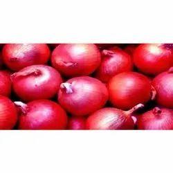Fresh Crop Red Onion