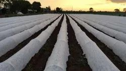 UV Treated Non Woven Fabric for Agriculture