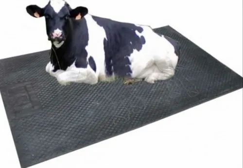 Drinking Bowl - Cow Drinking Bowl Manufacturer from Coimbatore