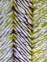Tie Dye Multi-Color Fabric