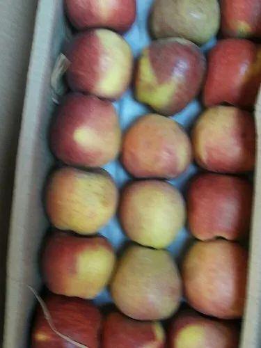Sonkar Wholesale Fruits - Wholesaler of Apple & Chiku from Navi Mumbai