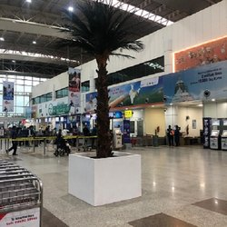 Artificial Date Palm Tree for Airport