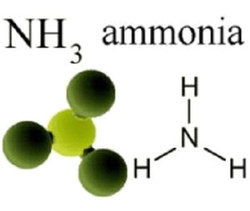 Ammonia Gas, Packaging Type: Cylinder