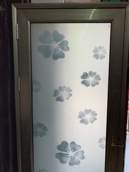 Home Safety Steel Doors With Glass