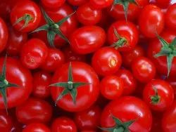 A Grade Red Tomatoes, Crate, 20 Kg