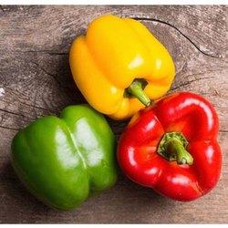 Green Capsicum A Grade Fresh Bell Peppers, Packaging Size: 10 Kg