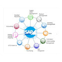 Online Sap Consultants Services