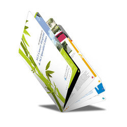 Color Booklet Printing Services