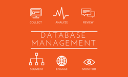 Database Management, Offsite Backup Services in Ahmedabad