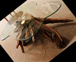 Natural Tree Root Table