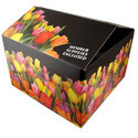 Offset Printing Boxes