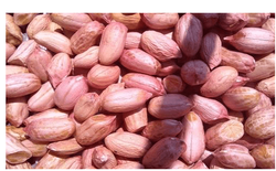 Groundnuts Counts : 35-45