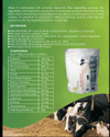 Milk Booster PR Cattle Feed Supplement