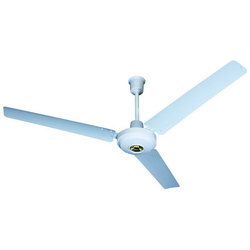 Electrical ceiling fans manufacturers suppliers dealers in electrical ceiling fans mozeypictures Image collections