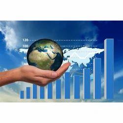 Import Export Consultancy Service