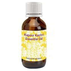 Kapoor Kachari Oil