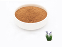 Acorus Calamus Extract