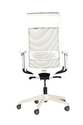 Phoenix-HB Office Chairs