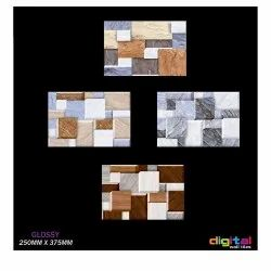 250x375mm 3D Elevation Digital Wall Tiles