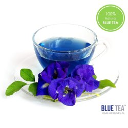 Ephedra Sinica (Mormons Tea) | Omega Pharma | Manufacturer