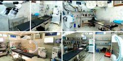 2D Echo Cardiography Services
