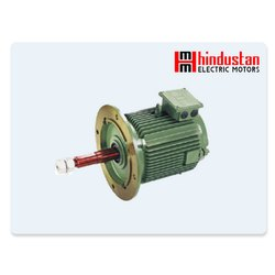 Hindustan Cooling Tower Motor